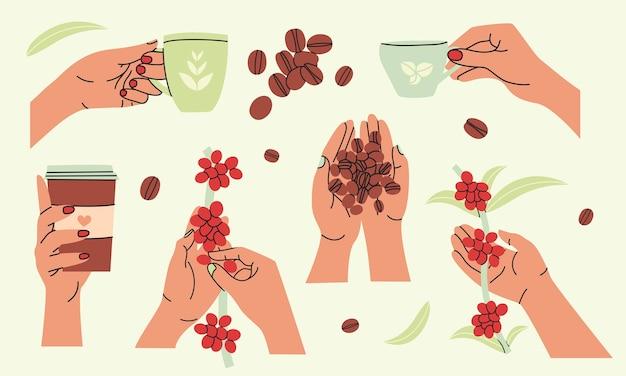 Set per la raccolta e la preparazione del caffè in design piatto