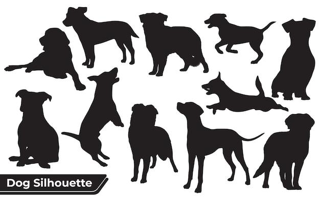 Collezione di cani animali in diverse posizioni