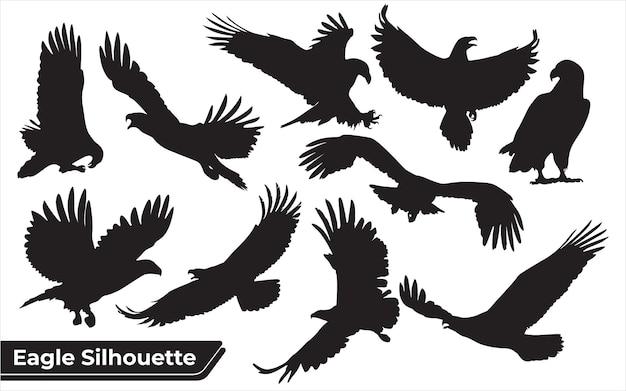 Collezione di sagome di aquile di uccelli in diverse posizioni