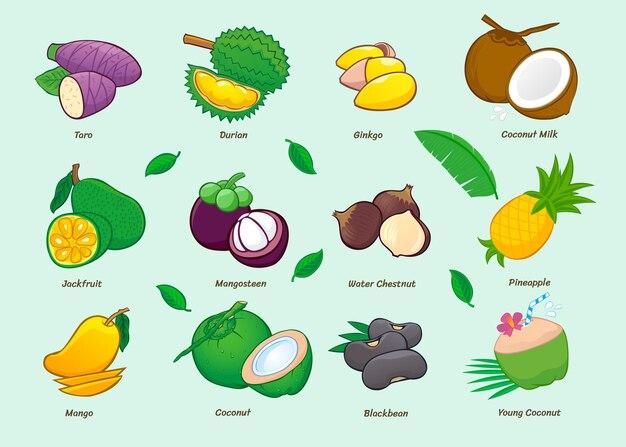 Raccolta di icone di cibo del fumetto. frutti asiatici.