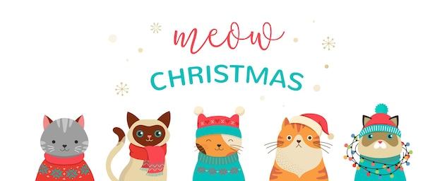 Collezione di gatti natalizi, illustrazioni di buon natale di simpatici gatti con accessori come cappelli lavorati a maglia, maglioni, sciarpe