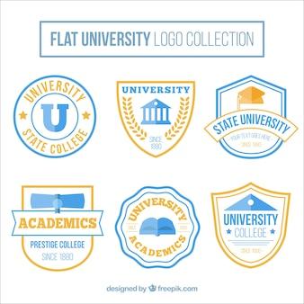 Raccolta di loghi universitari in design piatto