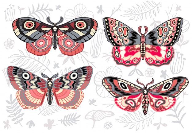 Collezione di farfalle colorate, falene tropicali notturne hawkmoth su sfondo floreale, set di insetti, stile vintage, ali, fiori, foglie. disegnato a mano .