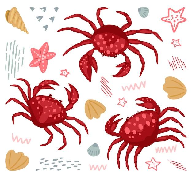 Raccolta di granchi carino isolato su bianco. illustrazione vettoriale astratta. disegno colorato di animali selvatici del mare. set di clipart dei cartoni animati, elementi per il design.