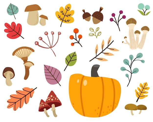 La raccolta di foglie carine, funghi in stile piatto vettoriale