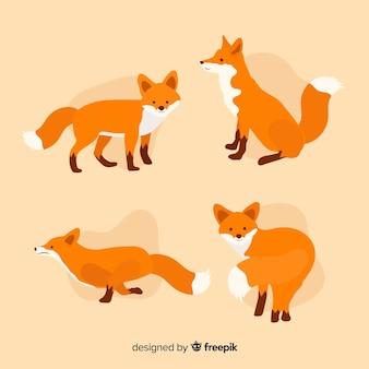 Collezione di simpatiche volpi