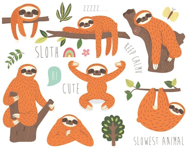 Raccolta di illustrazione di bradipo carino