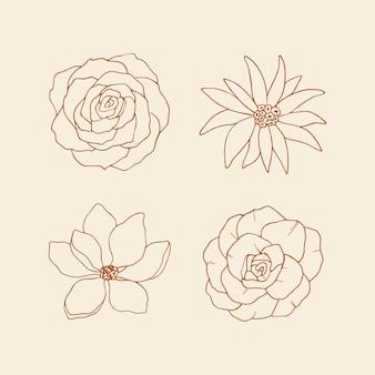 Collezione di fiori decorativi da disegno