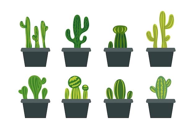 Raccolta di piante in vaso da giardino interno casa decorazione diversa