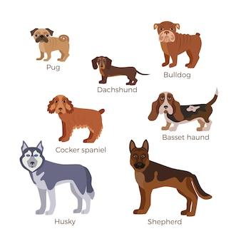 Raccolta di illustrazioni di cani