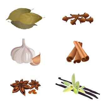 Raccolta di erbe aromatiche secche per la preparazione di piatti su bianco. illustrazione di aglio, bastoncini di cannella, chiodi di garofano secchi, foglie di alloro, anice stellato, vaniglia. spezie per cucinare e per esaltare il gusto