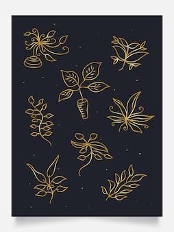 Collezione di eleganti ornamenti floreali in oro, adatti per la decorazione della parete, carta da parati, copertina, invito, banner, brochure, poster, imballaggio o carta