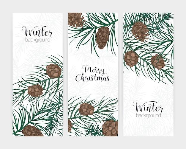 Raccolta di striscioni eleganti inverni festivi verticali con rami di conifere della foresta e coni e scritte di vacanza