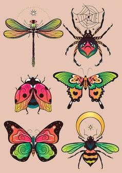 Collezione di insetti colorati fantasia per il design Vettore Premium