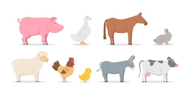 Collezione di animali da fattoria e uccelli in stile piatto alla moda