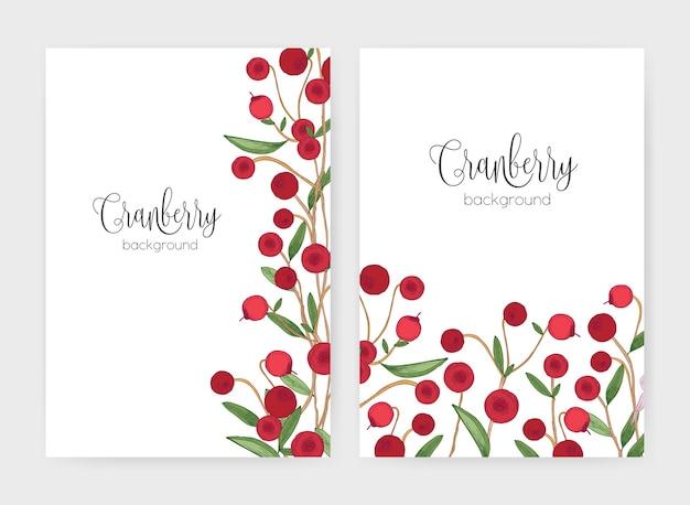 Raccolta di modelli di volantini o poster decorati con rametti di mirtillo rosso disegnati a mano su bianco