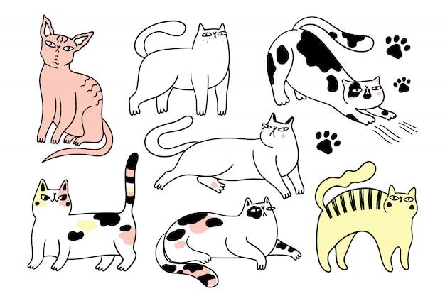 Collezione di gatti divertenti. il pacco di vari gatti del fumetto ha isolato l'illustrazione disegnata a mano