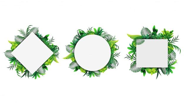 Collezione di cornici geometriche fatte di foglie tropicali isolati su uno sfondo bianco. modello di cornice con elementi tropicali per la tua creatività