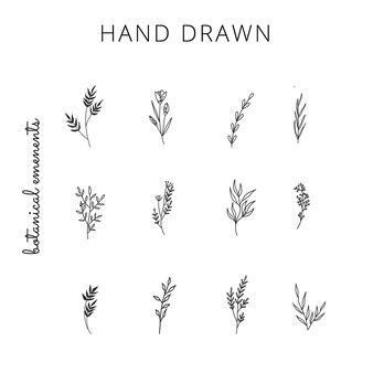 Raccolta di elementi floreali disegnati a mano