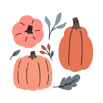 Raccolta di ringraziamento disegnato a mano, icone di zucche di halloween, foglie e bacche.