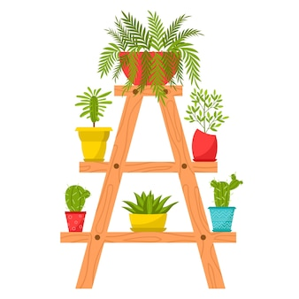 Raccolta di piante domestiche in vaso. piante decidue, succulente in vasi di fiori.