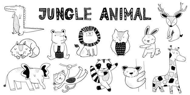 Collezione di animali della giungla
