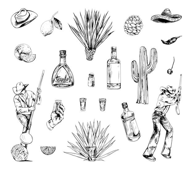 Raccolta di illustrazioni monocromatiche della produzione di tequila in stile schizzo