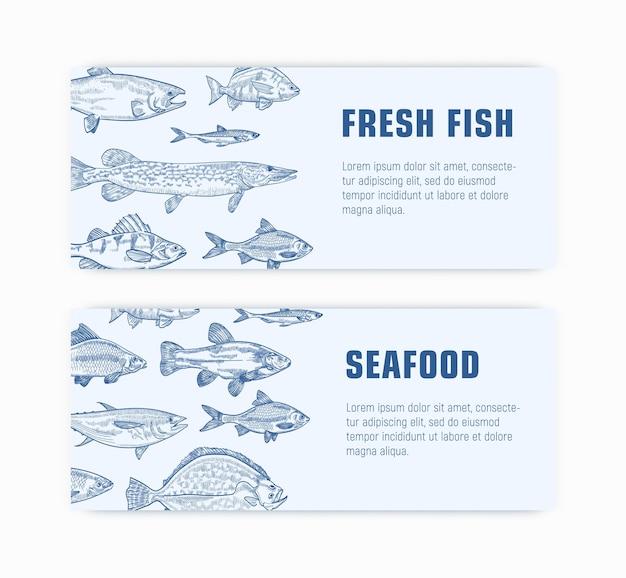 Raccolta di modelli di banner web monocromatico con pesce disegnato a mano con linee di contorno