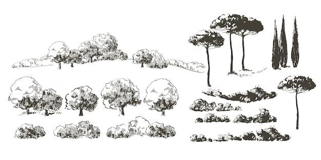 Raccolta di alberi realistici isola con foglie. frutteto, piante da frutto, cespugli di arbusti.