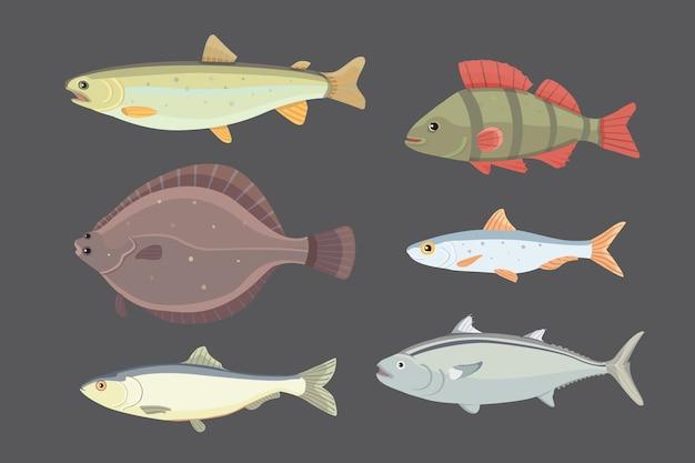 Raccolta di pesci di fiume