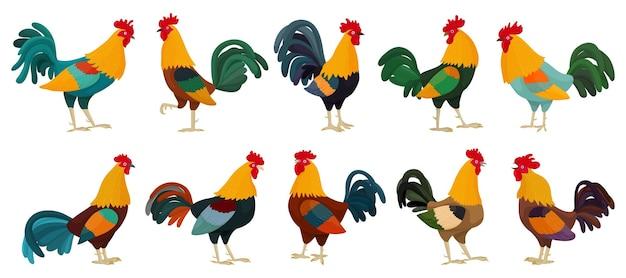 Collezione di galli in stile cartone animato. un set di 10 galli luminosi diversi, come simbolo o mascotte, per libri per bambini e carte con lettere, illustrazione vettoriale