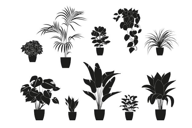 Sagome di raccolta di piante d'appartamento in colore nero. piante in vaso isolate su bianco. impostare piante tropicali verdi. decorazioni per la casa alla moda con piante da interno, fioriere, foglie tropicali.