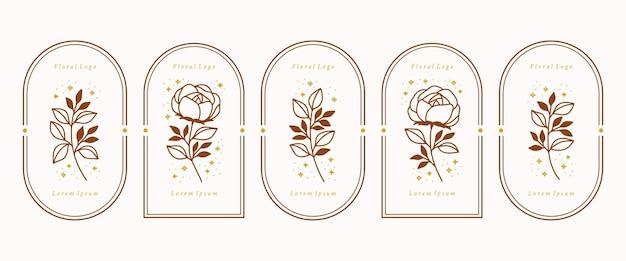 Raccolta di elementi di logo femminile floreale rosa vintage con stelle e cornice