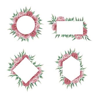 Collezione di cornici di fiori di peonia dell'acquerello