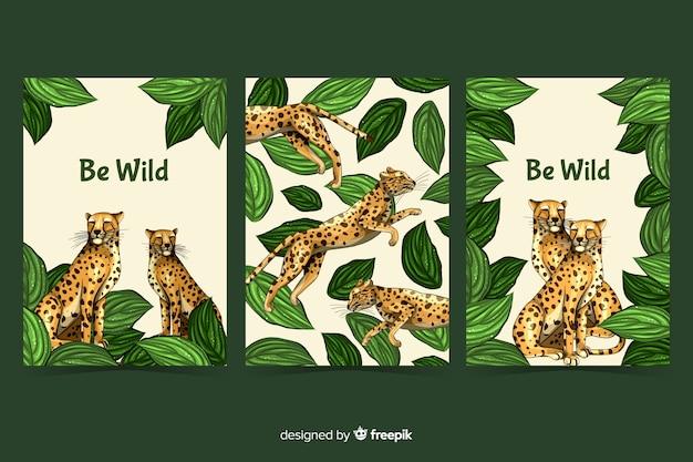 Collezione di carte di animali selvatici