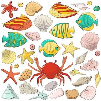 Collezione con conchiglia, stella marina, pietra, vettore, set, per, disegno, in, mare, spiaggia, style