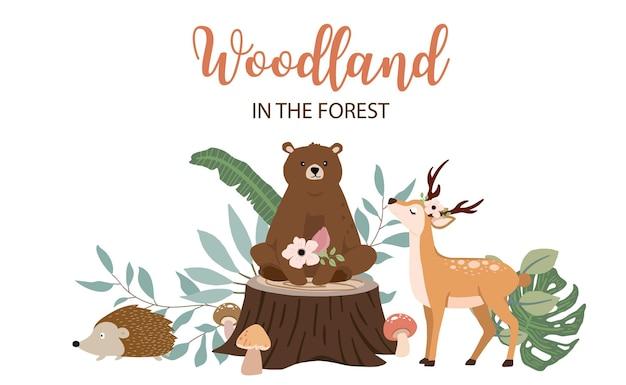 Raccolta di sfondo bosco impostato con un design colorato