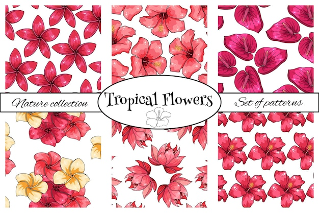Collezioni di motivi tropicali con fiori esotici in stile cartone animato. stampa estiva brillante per design e sfondo.