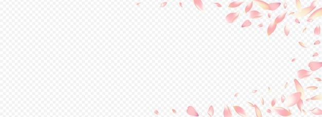 Sfondo trasparente panoramico di vettore del fiore di colore. illustrazione del giardino dell'albero. modello di sovrapposizione di pesca. congratulazioni alla mosca della mela. bandiera giapponese rossa di sakura.