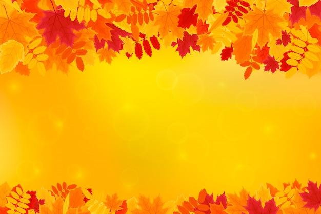 Foglie di autunno colorate su sfondo arancione con copyspace