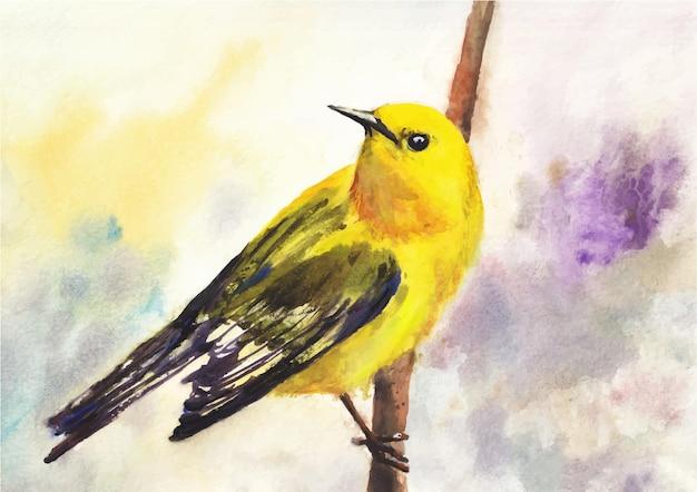 Uccello colorato su un albero pittura ad acquerello su carta
