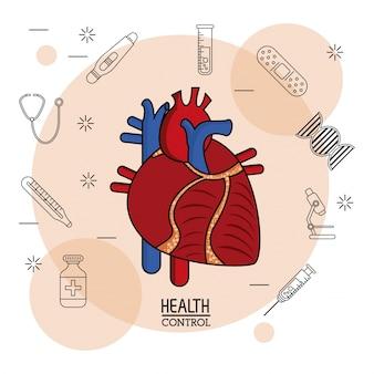 Sistema cardiovascolare colorato in primo piano