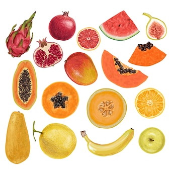 Colorati deliziosi frutti disegnati a mano
