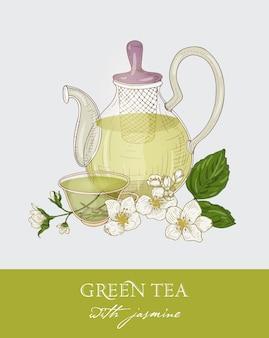 Disegno colorato di teiera in vetro con colino, tazza di tè verde, foglie di gelsomino e fiori su grigio