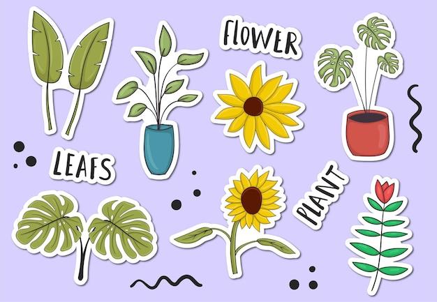 Collezione di adesivi colorati piante disegnate a mano