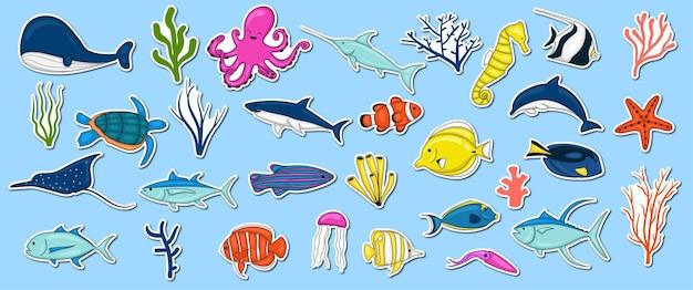 Collezione di animali marini disegnati a mano colorati