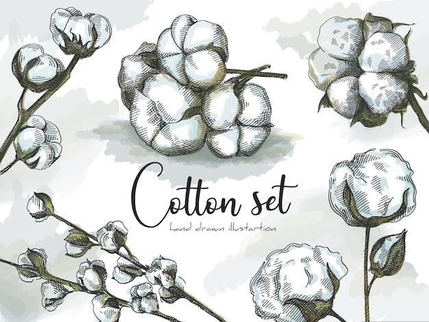 Insieme di schizzo disegnato a mano variopinto di cotoni. cotton fioc. steli di cotone. rami di cotone. set colorato.