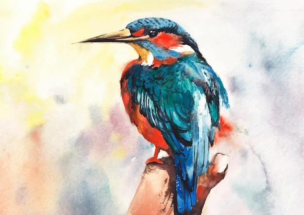 Pittura ad acquerello colorato martin pescatore e design artistico