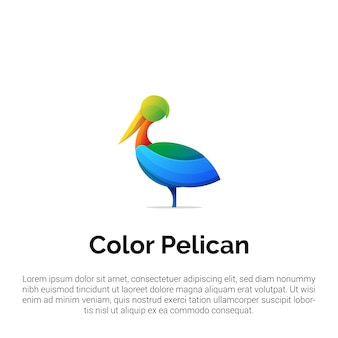 Modello di logo colorato pellicano