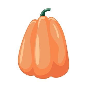Zucca colorata su sfondo bianco illustrazione vettoriale. simbolo di halloween